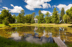 Small pond at the village Royalty Free Stock Image