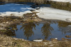 Small pond with water in winter Royalty Free Stock Photo