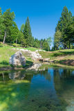 Small pond in the woods of the Alps. Royalty Free Stock Images
