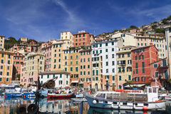Small port in Camogli, Italy Stock Images