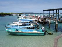 Small port Island Isabela Galapagos Islands Royalty Free Stock Photos