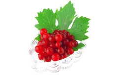 Small portion of wild berry Stock Photo