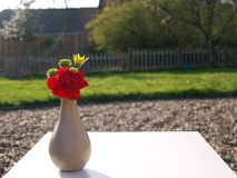 Small posy of flowers with red carnation. Flowers in a simple vase on a white table top with a garden background royalty free stock images
