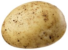 A small potato Royalty Free Stock Images