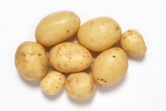 Small potatoes. A pile of small potatoes on white background Royalty Free Stock Photo