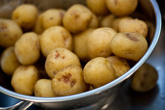 Small Potatoes in Colander Royalty Free Stock Photography
