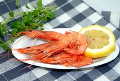 Small prawns cooked Royalty Free Stock Photography