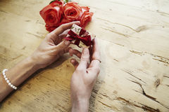 Small present box with bow in beautiful woman hands. Focus on bow. Red roses flowers behind on wooden table. St. Valentine`s day c Stock Photos