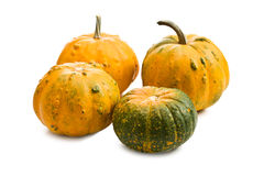 Small pumkins Royalty Free Stock Images