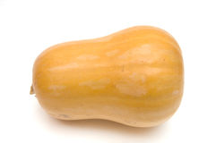 Small pumpkin Royalty Free Stock Photo