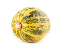 Small pumpkin Stock Image