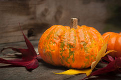 Small pumpkin with autumn leaves Stock Photo