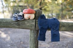 A small pumpkin and baby shoes. On a fence at a maternity photo shoot stock images