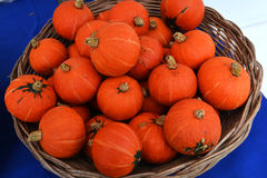 Small pumpkin basket Royalty Free Stock Photography