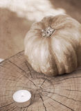 Small pumpkin and burning candle Royalty Free Stock Photos