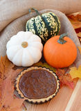 Small pumpkin pie with leaves and gourds Stock Photography