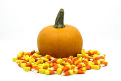 Small pumpkin surrounded by candy corn isolated Stock Images
