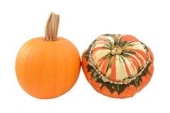 Small pumpkin and Turks Turban squash Royalty Free Stock Images