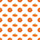 Small pumpkin. Watercolor seamless pattern with small pumpkins Stock Images