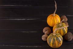 Small pumpkin yellow Royalty Free Stock Photography