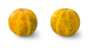 Small pumpkins. Two small pumpkins on white background Royalty Free Stock Photos