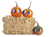 Small Pumpkins and a Bale of Hay Stock Images
