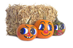 Small Pumpkins and a Bale of Hay Royalty Free Stock Photography