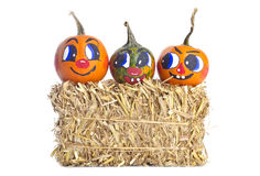 Small Pumpkins and a Bale of Hay Royalty Free Stock Images