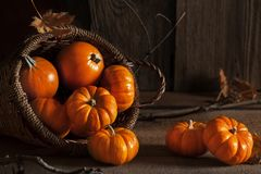 Small Pumpkins in Basket on Old Wood Table Royalty Free Stock Photography