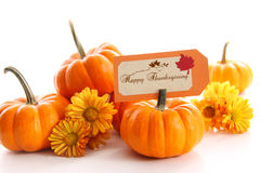 Small pumpkins with chrysanthemums and card Stock Photo