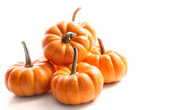 Small Pumpkins On White On White Royalty Free Stock Images