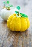 Small pumpkins Royalty Free Stock Photo