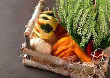 Small pumpkins in a wooden basket Stock Photography
