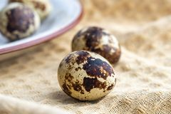 Small quail eggs on the cloth, eco product.  royalty free stock photos