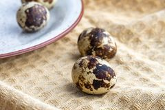 Small quail eggs on the cloth, eco product.  stock photos