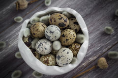 Small quail eggs wooden table dish  scattered database Royalty Free Stock Photography