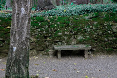 Small Quiet Bench in Forgotten Garden. With moss growing on stones Royalty Free Stock Photos