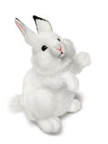 Small rabbit vector illustration