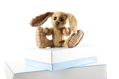 Small rabbit bunny soft toy sitting Royalty Free Stock Photography