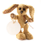 Small rabbit bunny soft toy standing Royalty Free Stock Photos
