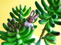 Small rabbit on green tree Stock Images