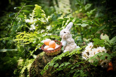 Small rabbit hold eggs in basket and sweet carrot on the rock fo Royalty Free Stock Photo