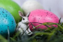 Small rabbit next to colorful Easter eggs Royalty Free Stock Photo