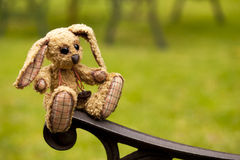 Small rabbit soft toy sitting in an iron bench Stock Photo