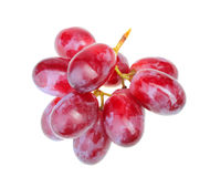 Small branch of fresh red grape. Small ranch of fresh red grape. Isolated on white background. Close-up. Studio photography Stock Photo