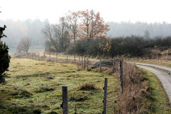 Small raod. Autumn, small road in foggy landscape Royalty Free Stock Photography