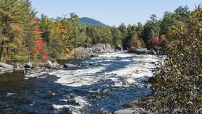 Small rapids Penobscot River. White water on narrowing section of Penobscot River Royalty Free Stock Photo