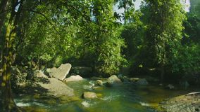 Small rapids river in the forests of Cambodia stock footage