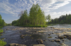Small rapids on a river. Stock Images