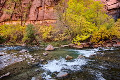 Small Rapids on the Virgin River Stock Photography